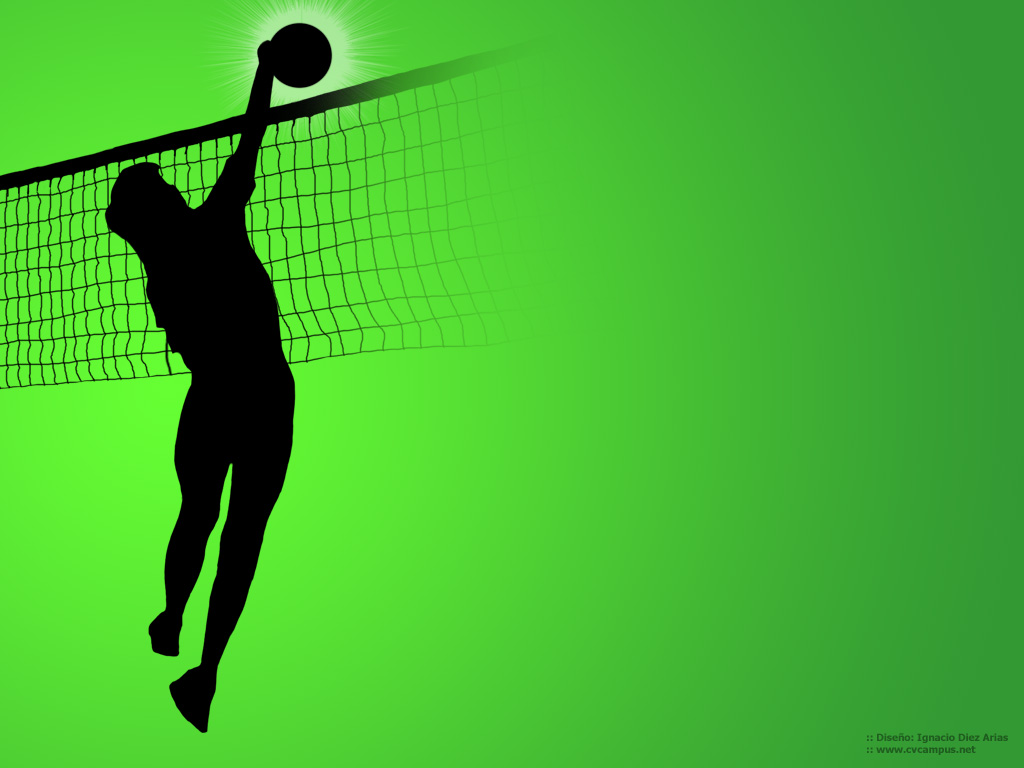 Volleyball Wallpapers 1024x768