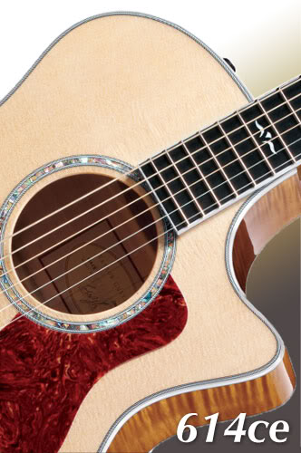 Taylor Guitars iPhone Wallpaper   The Acoustic Guitar Forum 332x500