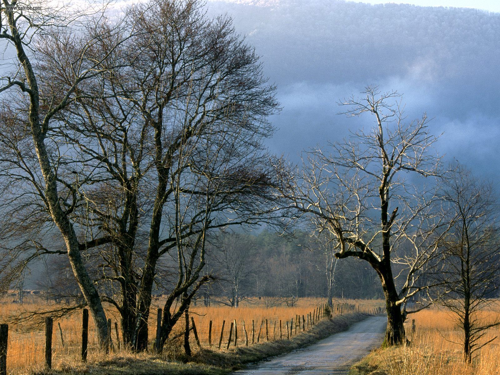 Sparks Lane Cades Cove Great Smoky Mountains National Park Tennessee 1600x1200