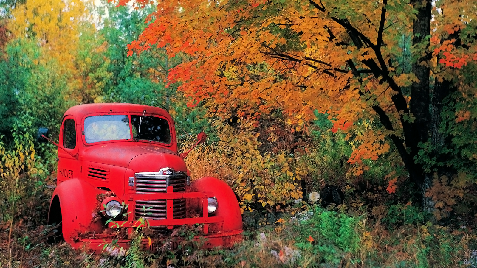 Autumn Old Truck Wallpaper Congress is More Conservative and 1600x900