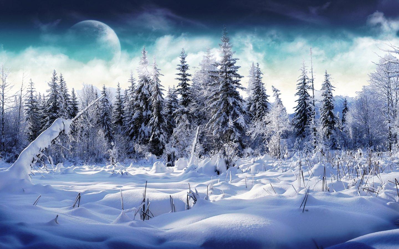 free winter scene wallpaper 2015 - Grasscloth Wallpaper