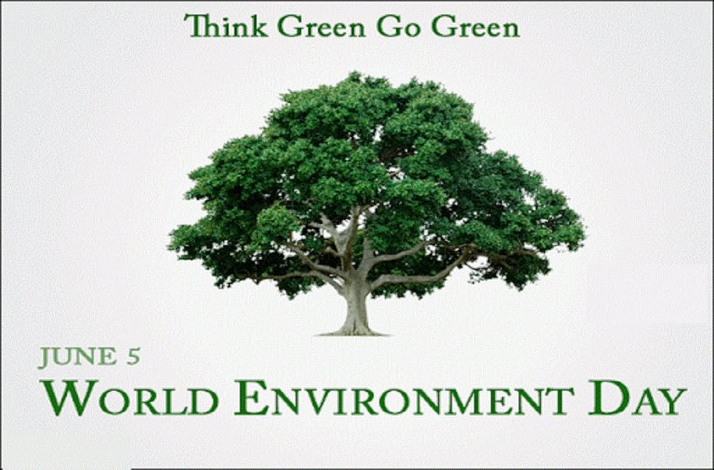 40 Best World Environment Day Wish Pictures And Photos 1024x675