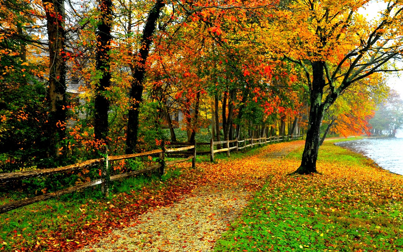 1680x1050 Fall Colors Wallpaper Download
