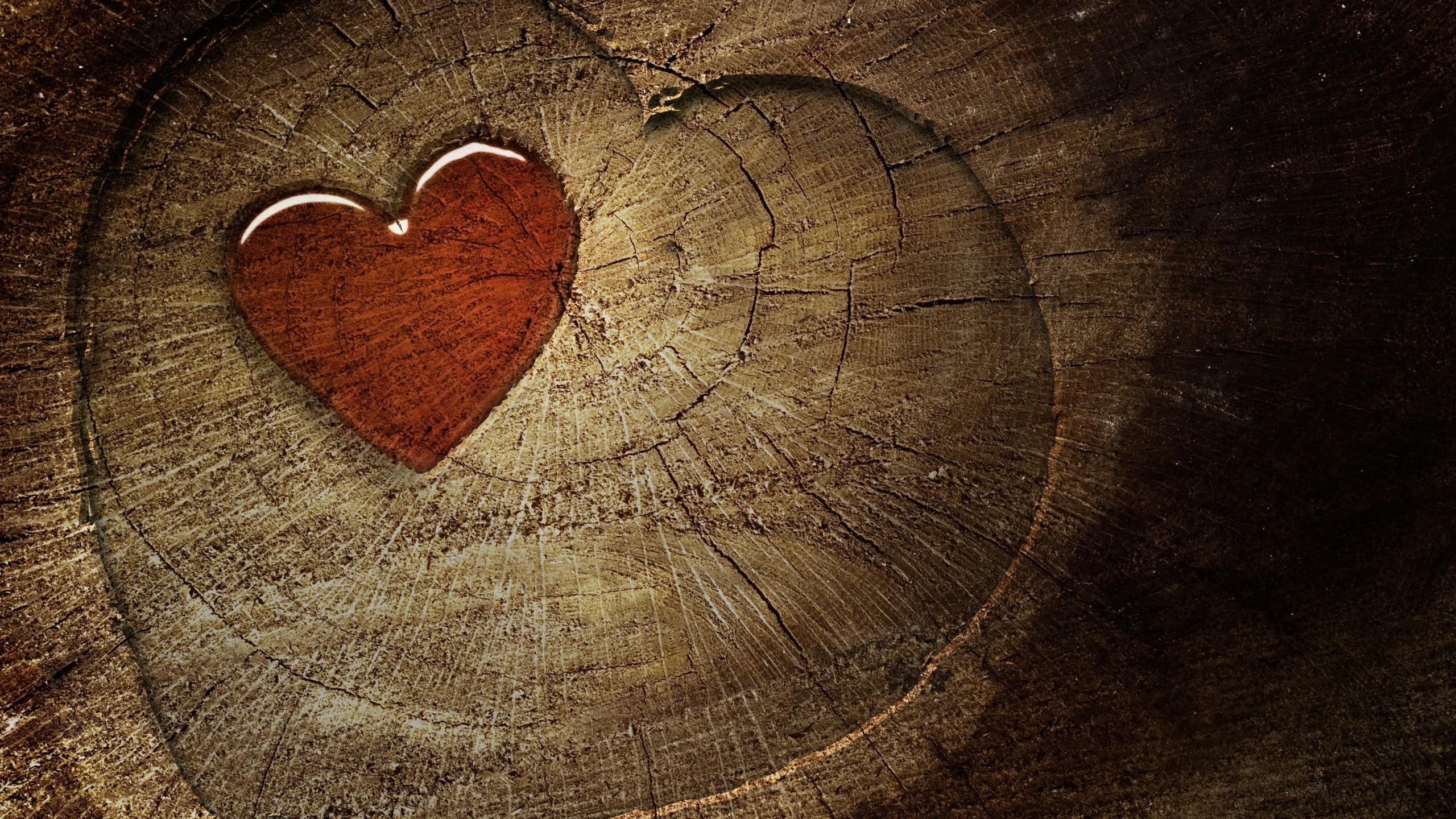 Wood Heart 3D Wallpaper   HQ Wallpapers download 100 high 2560x1440