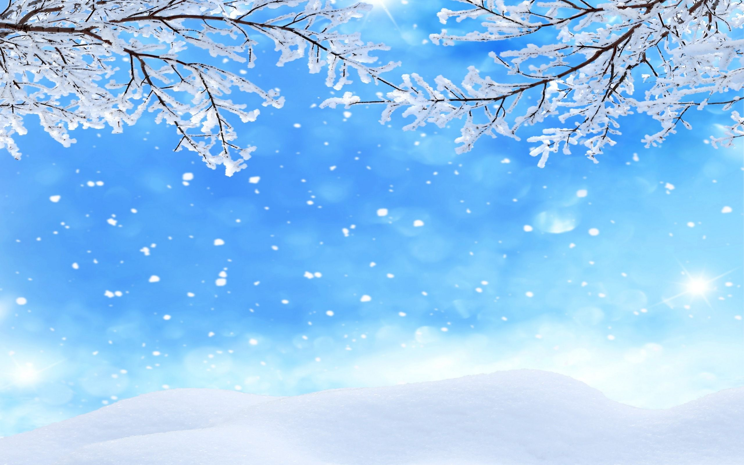 winter background clipart 2560x1600
