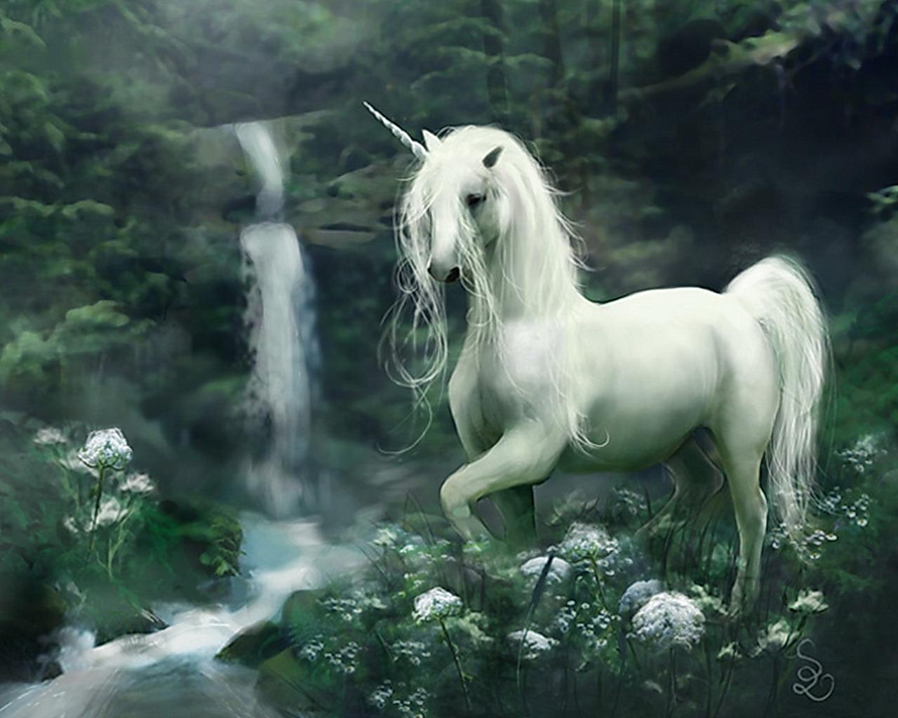 Unicorn   Fantasy Photo 30995379 1280x1024