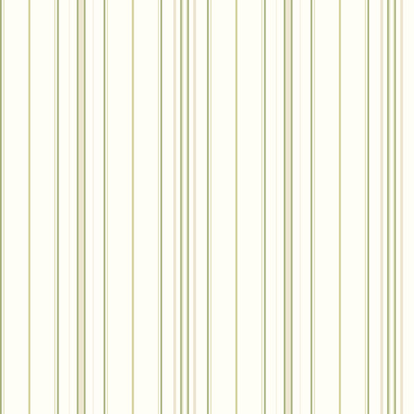 Green Wide Pinstripe Wallpaper   Wall Sticker Outlet 600x600