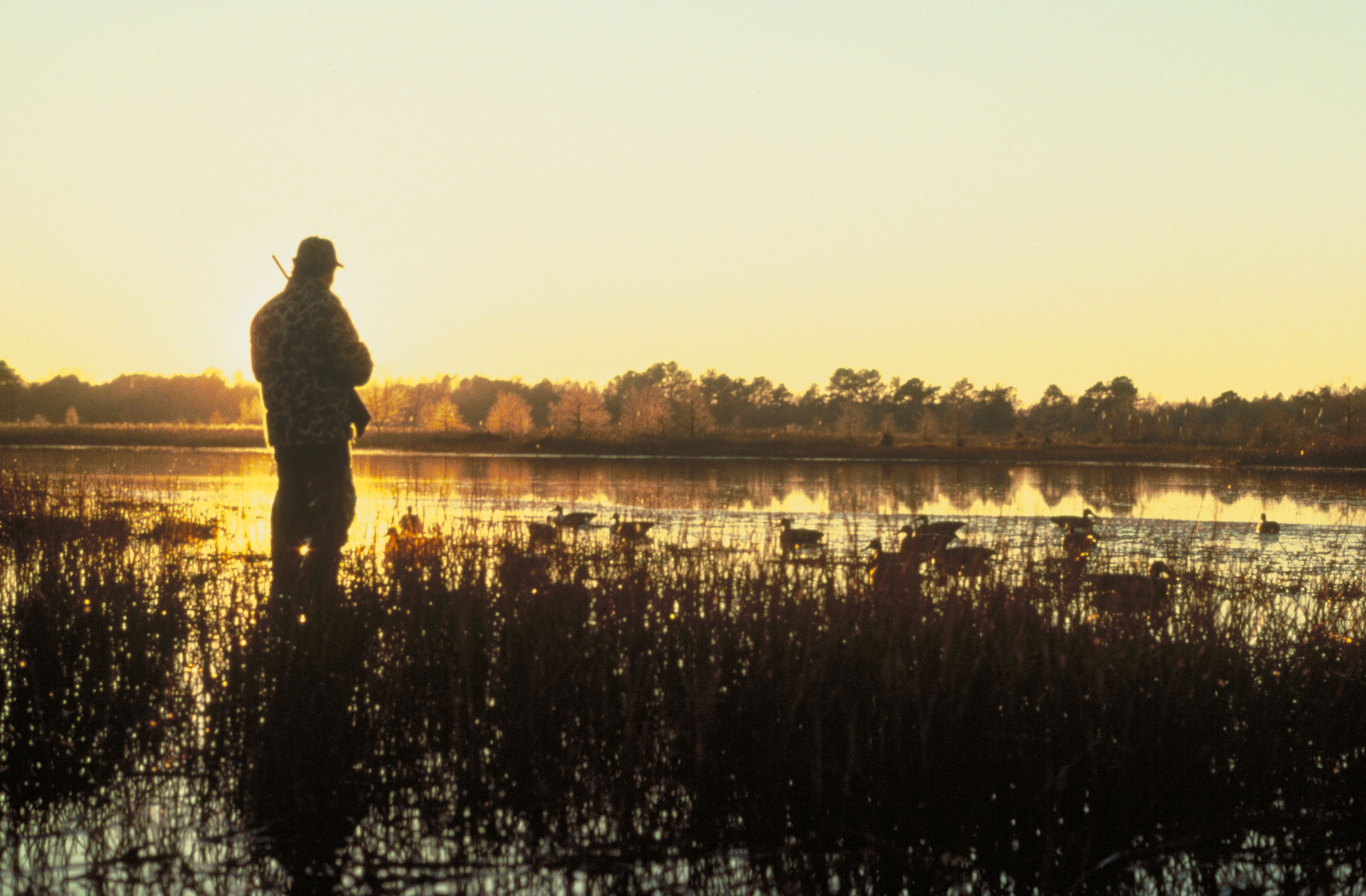 Hunting And Fishing Background Waterfowl hunting at dusk 3658x2400