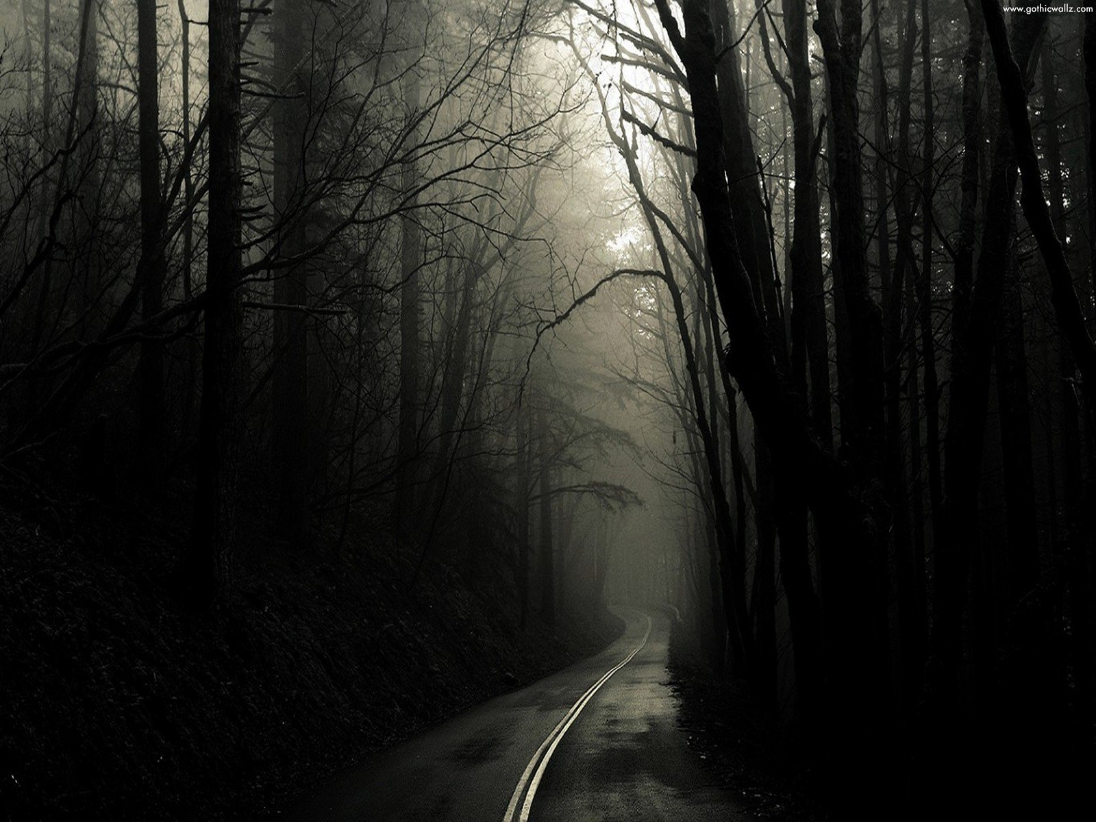 gothic wallpapers 08gothicwallzblogspotcomjpg 1600x1200