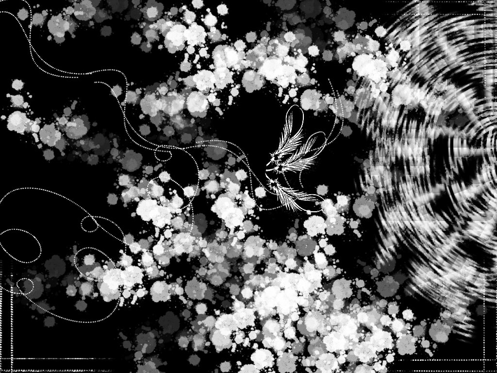 Cool Black And White Designs 3044 Hd Wallpapers in Others   Imagesci 1024x768