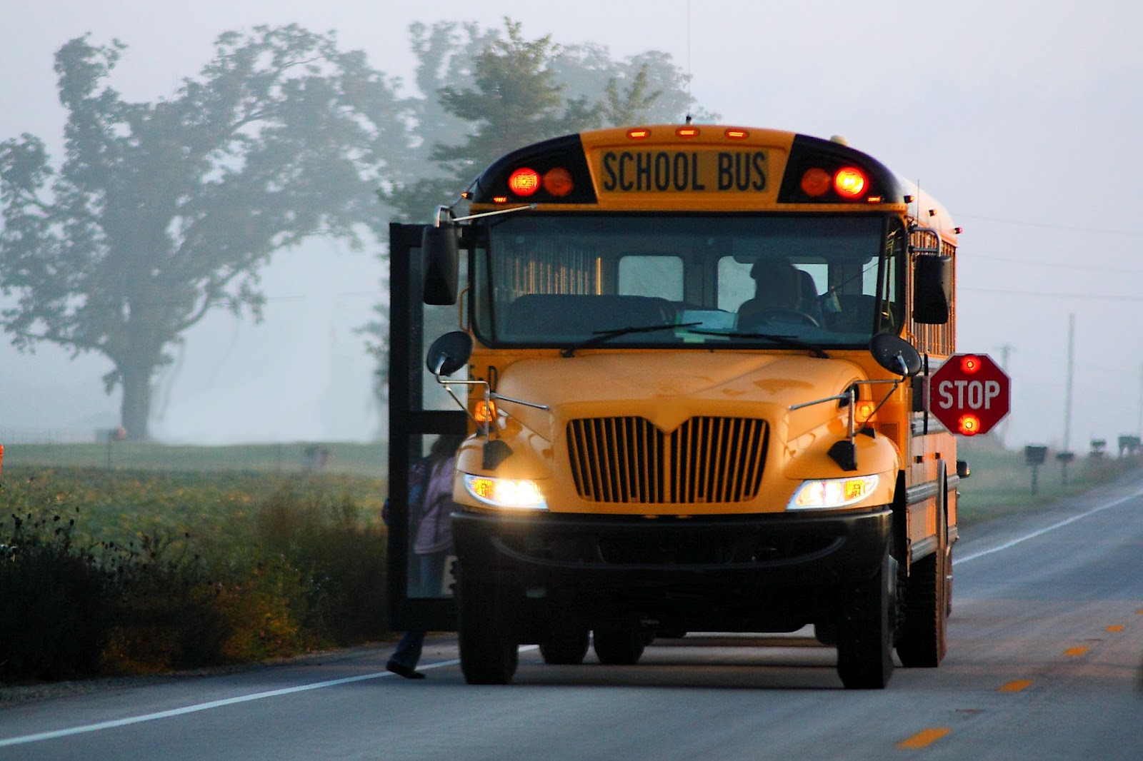 Wallpapers and pictures School bus in the morning hd wallpaper 1600x1066