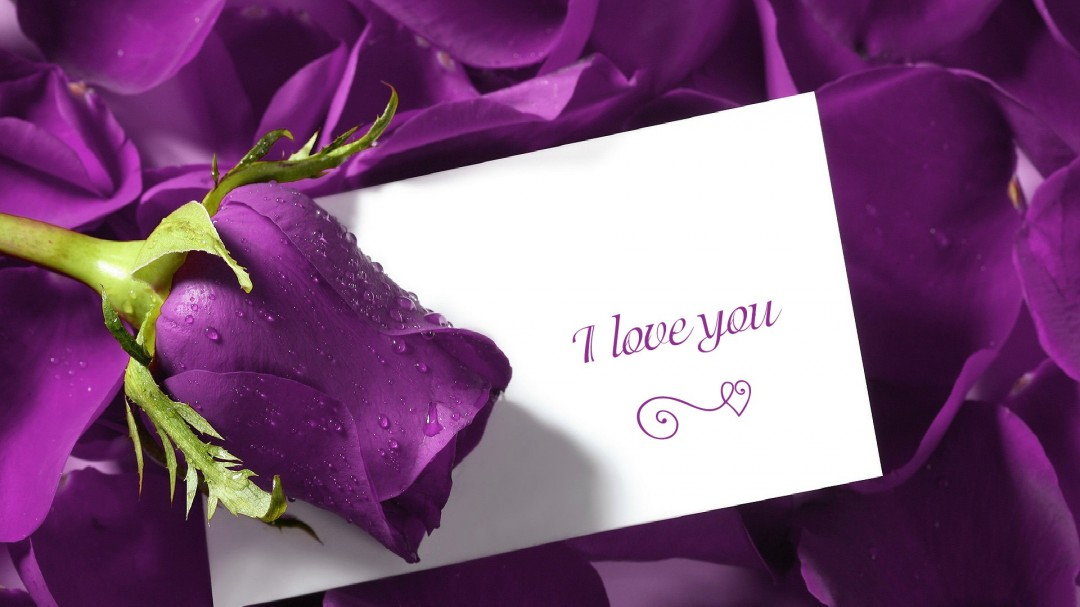 Wallpapers Love Love wallpaper with blue rose or love letter 1080x607