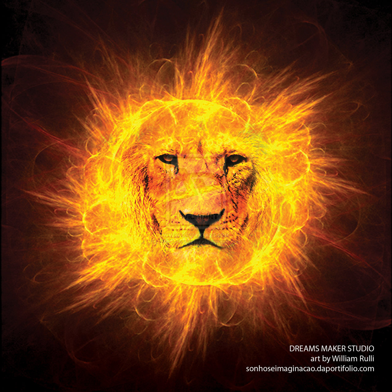 Lion Of Judah Wallpapers 1280x1280