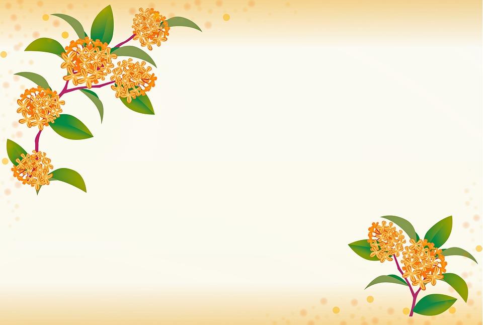 Floral Background Flowers Vines   image on Pixabay 960x646