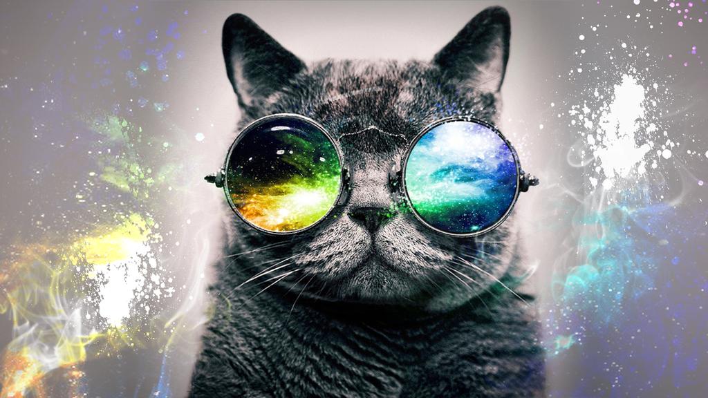 HD Desktop Background  Galaxy Cat by PattersonDesigns 1024x576