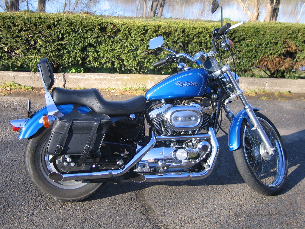 Harley Davidson Sportster 1200 Custom   Harley Davidson Wallpaper 1024x768