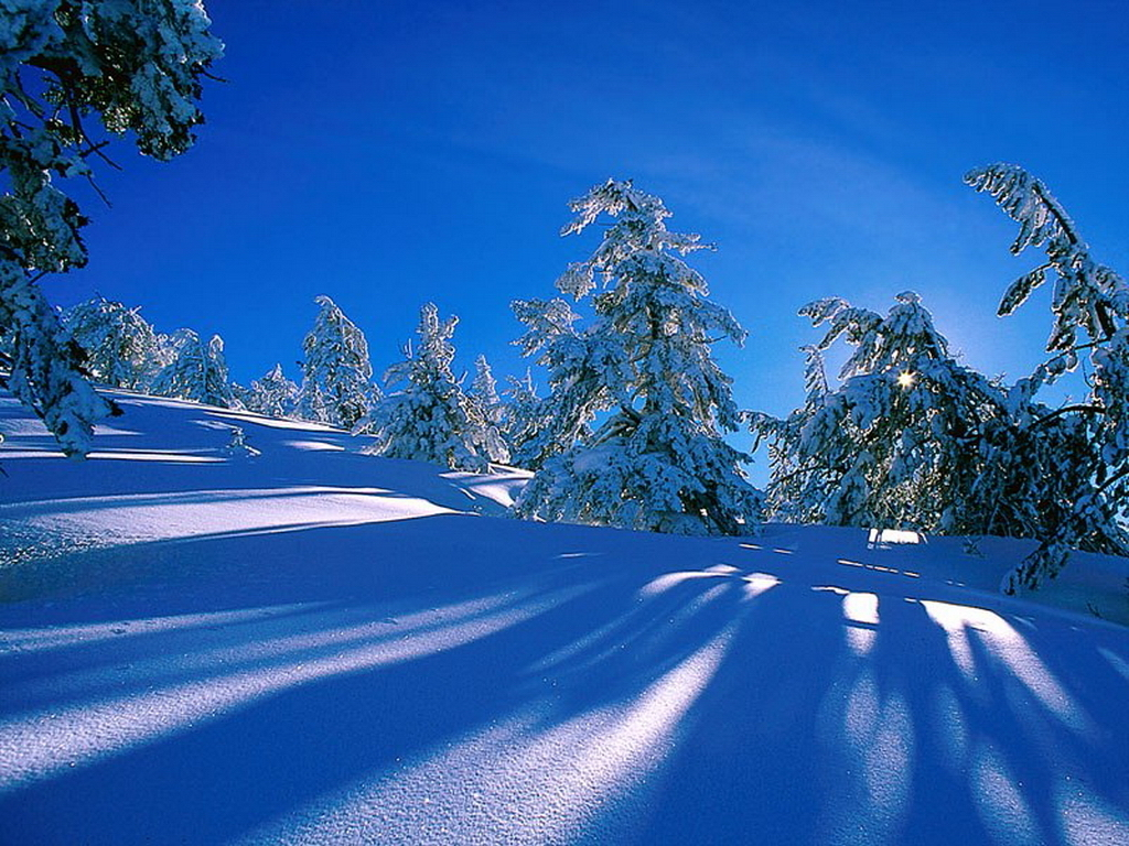 Desktop Wallpaper Winter Scenes 1024x768