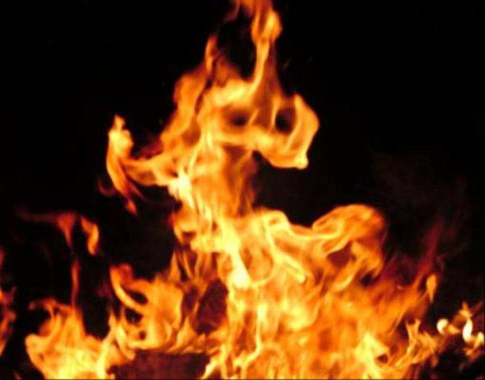 hollywood artist Maya Fire Wallpapers Wallpaper of Fires 997x780