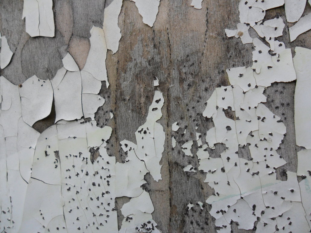 Peeling Wood Paint by Fishbling 1032x774