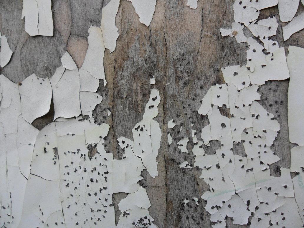 Peeling Wood Paint by Fishbling 1032x774
