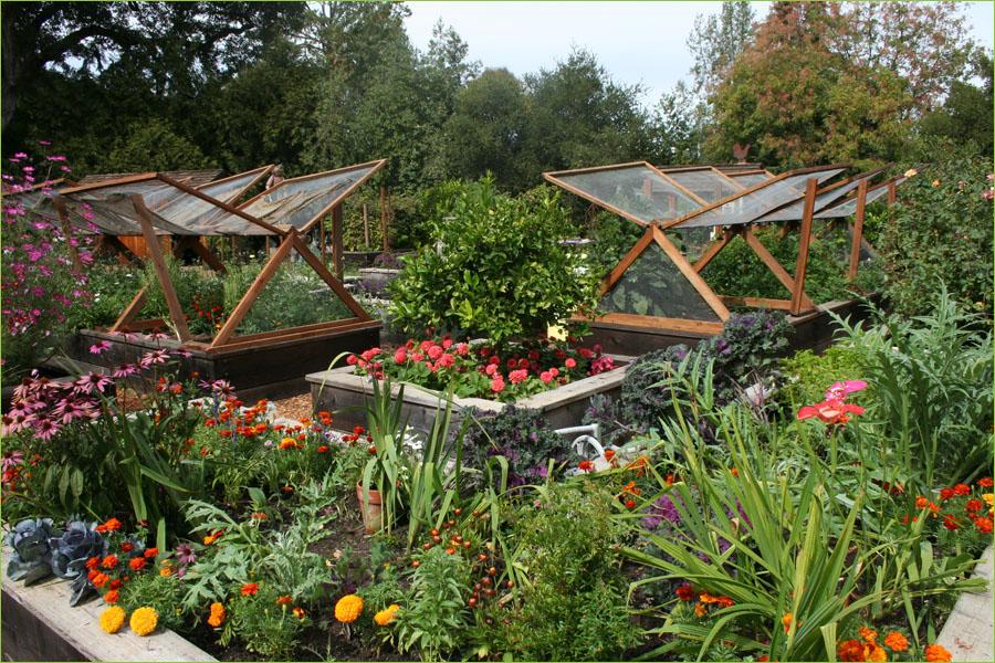 Vegetable garden wallpaper flower garden wallpapers 900x600