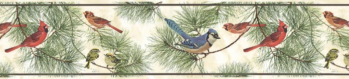 Details about Glen Loates PINE BRANCH BIRD Wallpaper Border GL76350 700x159
