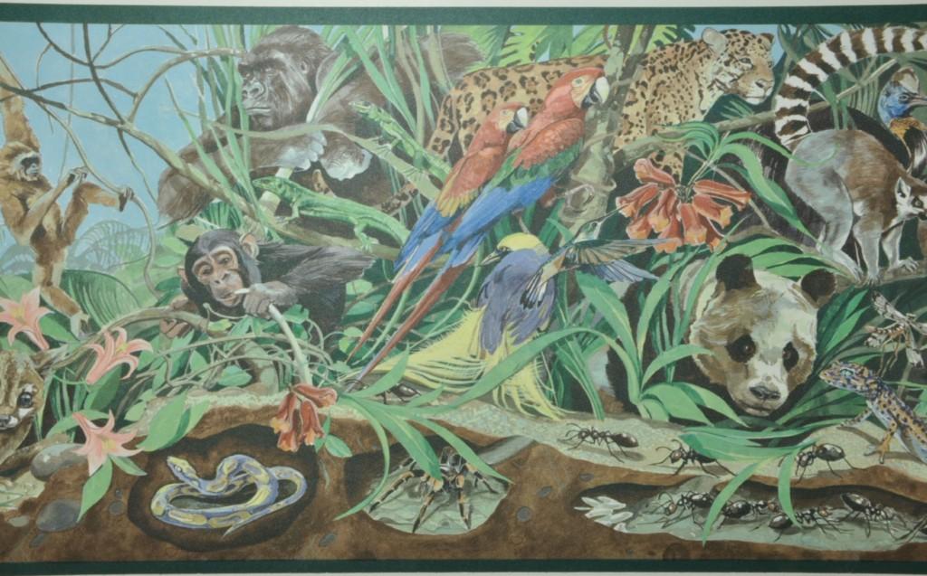 Details about Wallpaper Border wildlife animals 329B39901 1024x637