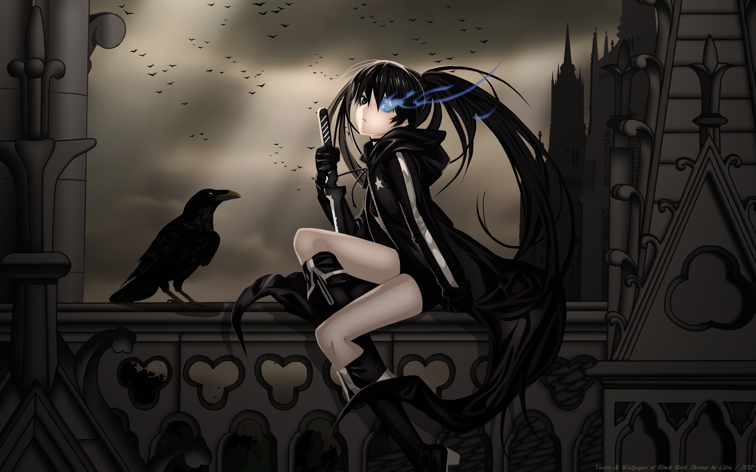 Home Browse All Black Rock Shooter Raven 2560x1600