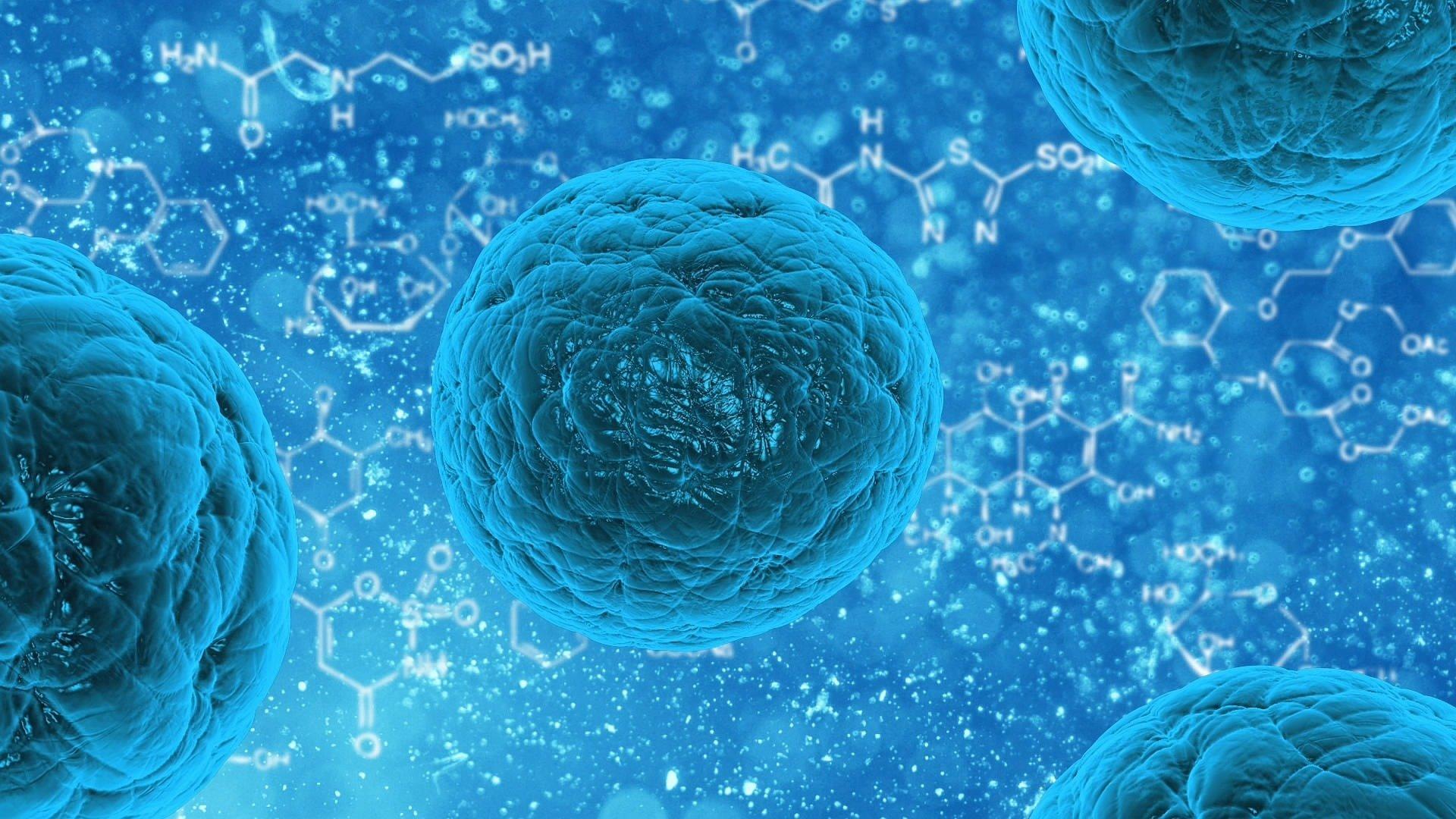 Genetically encoded sensor isolates hidden leukemic stem cells 1920x1080