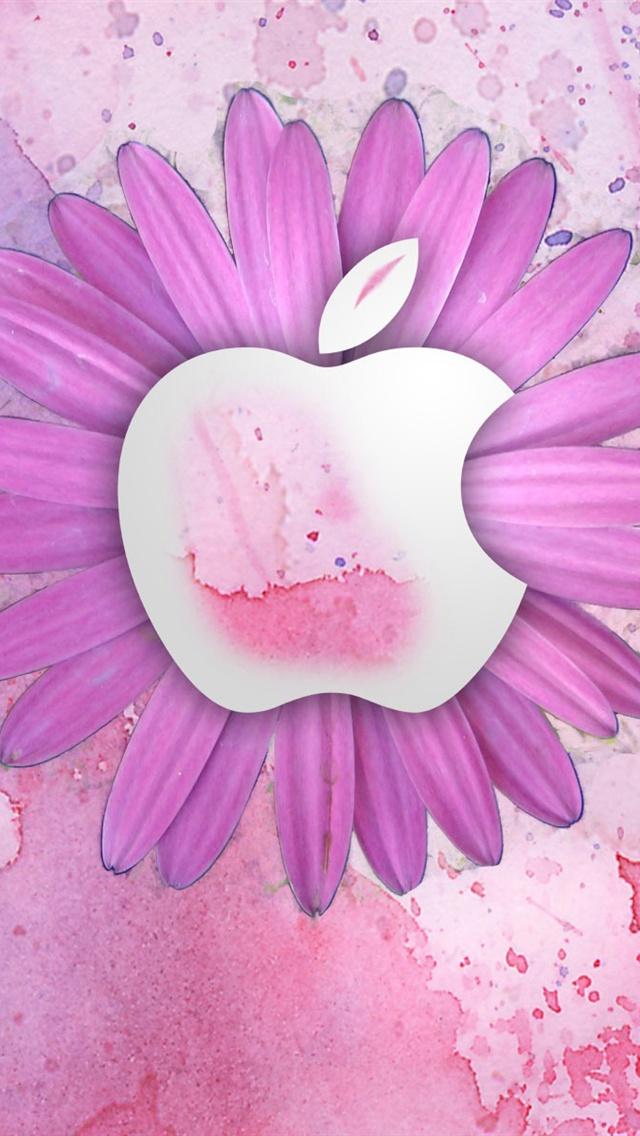 flower Apple iPhone Wallpaper 640x1136 iPhone 5 5S 5C wallpaper 640x1136