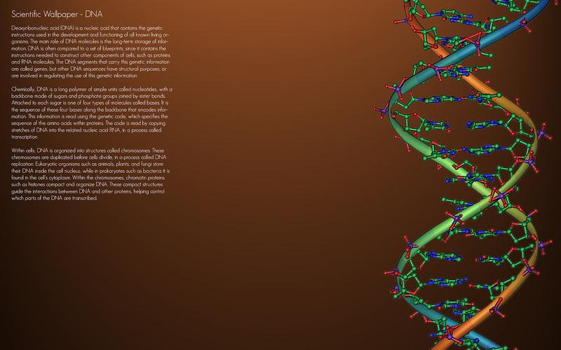 DNA Wallpaper DNA Background for Desktops 800x500