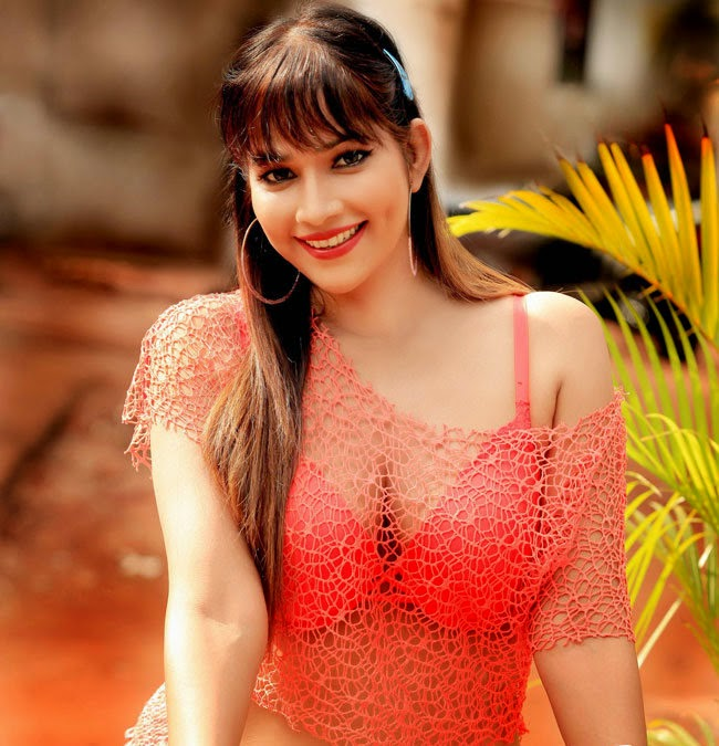latest photos hot stills spicy images desi actress pictures 0 views 650x675