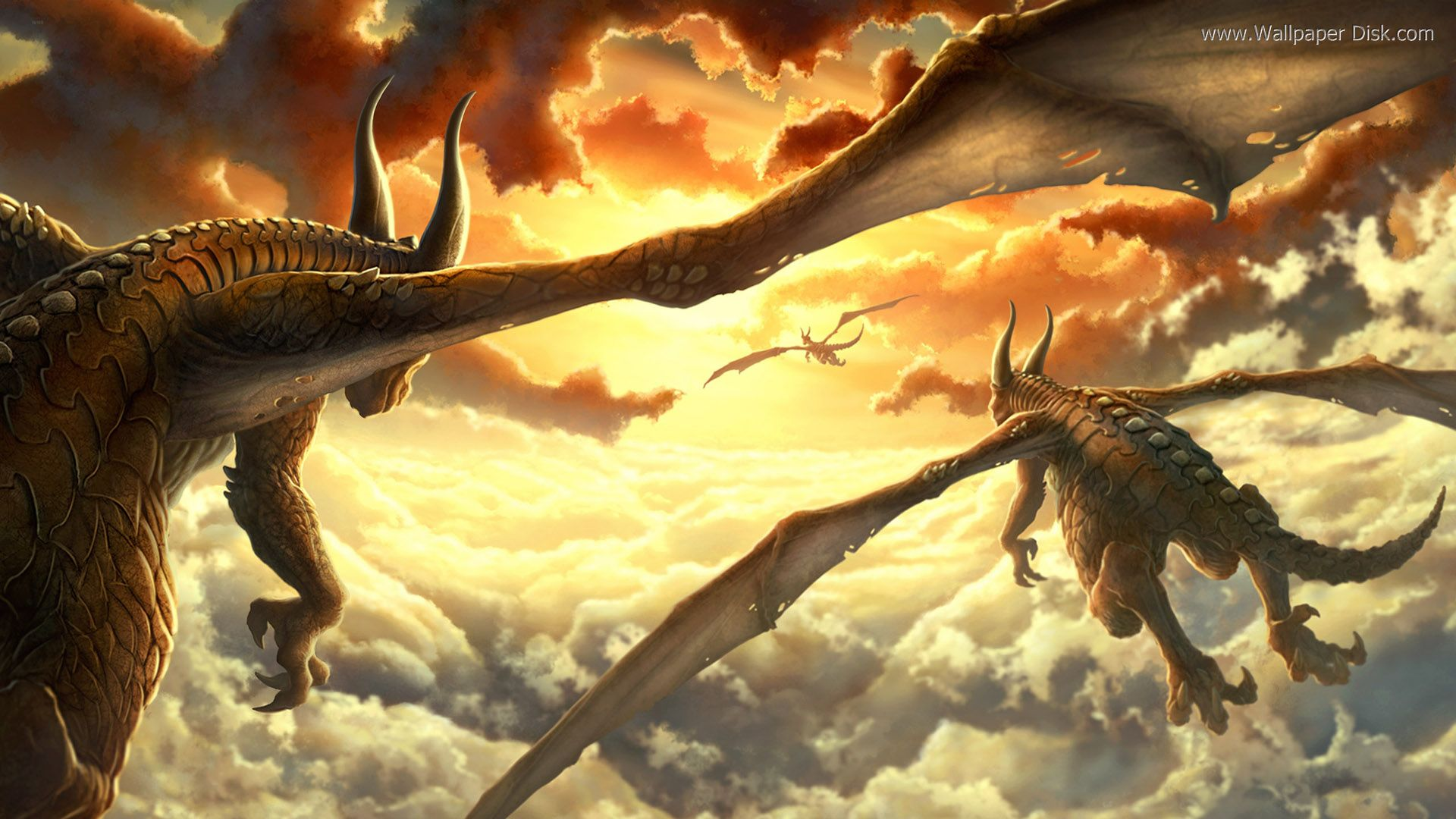 Download Flying Dragon Wallpaper 1920x1080