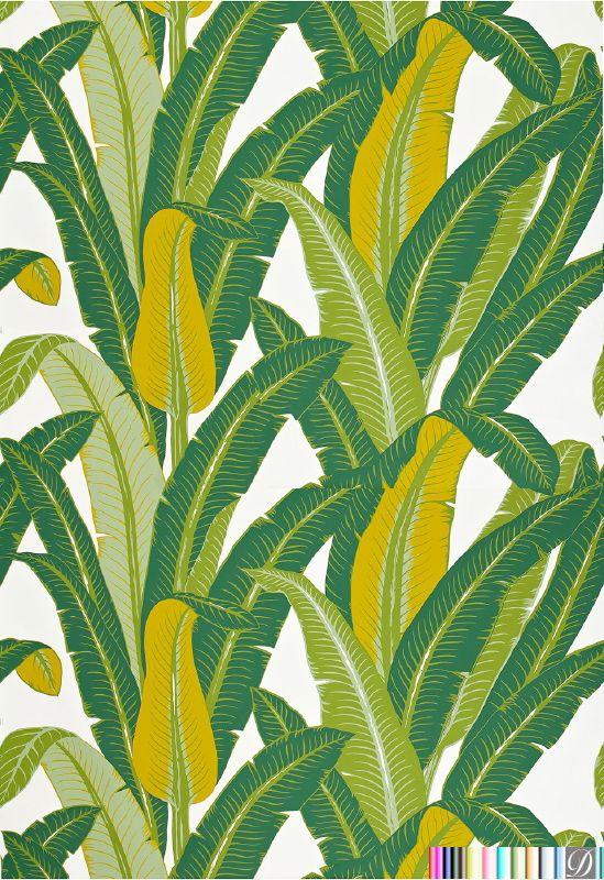 Pompador Palm Beach Palm Leaf   Green Tropical Leaf [PRS 85700 549x800