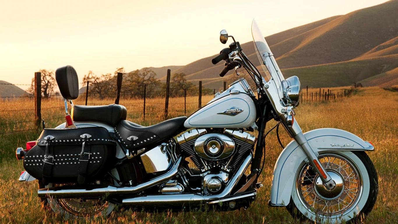 [43+] Harley Davidson Desktop Wallpaper Softail on ...