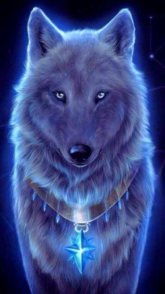 Blue wolf wallpaper wolfs and dragons in 2019 Wolf wallpaper 540x960