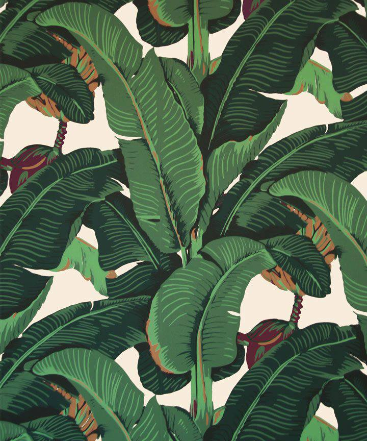 JUNGLE OUT THERE KATE SPADES MARTINIQUE PILLOW A FACEBOOK EXCLUSIVE 720x864