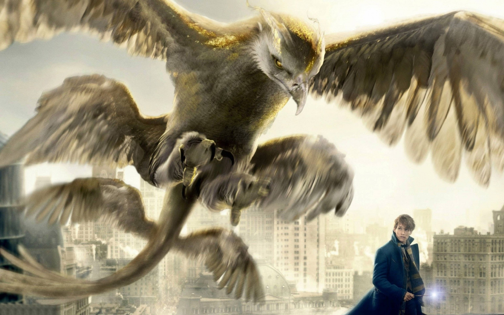 Fantastic Beasts And Where To Find Them Wallpapers HD Backgrounds 1920x1200