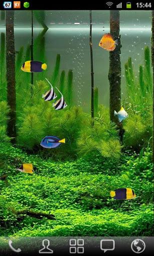 Aquarium Live Wallpaper for android Aquarium Live Wallpaper 307x512
