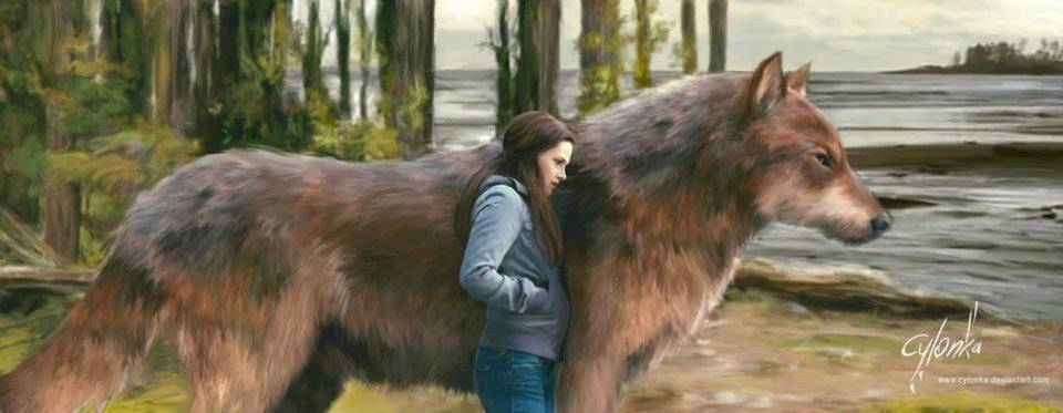 Bella And Wolf Jacob   The twilight saga Fanart 960x373