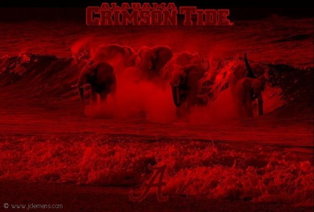 crimson tide2jpg 640x433