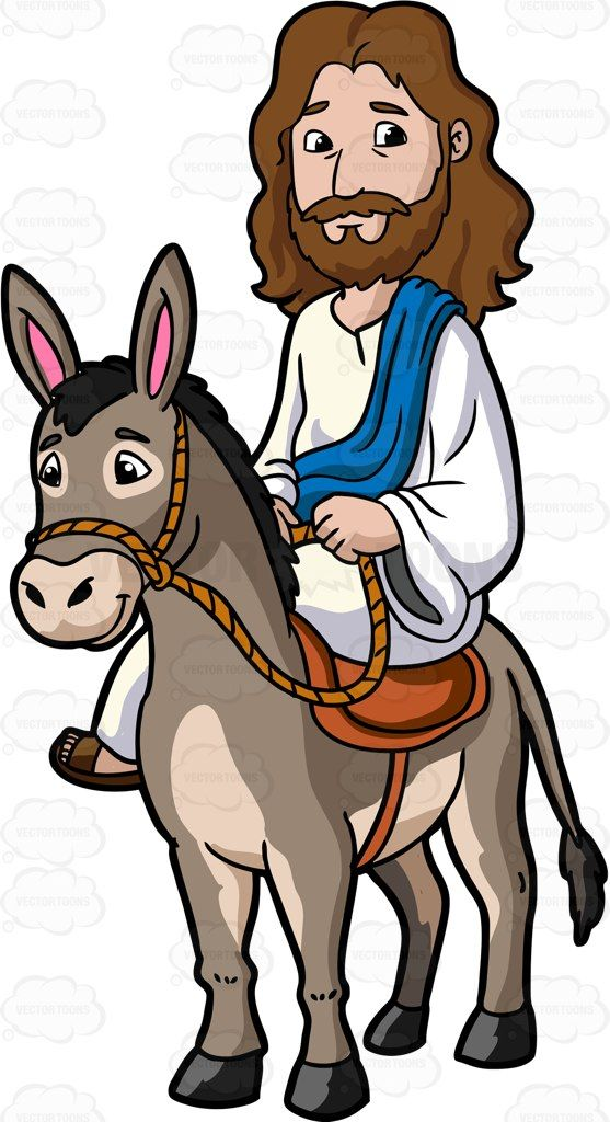 Donkey For Little Kids   Printable Bible Image   592632 557x1024