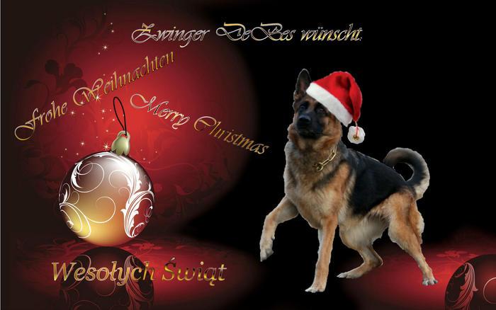 Christmas German Shepherd Wallpaper on