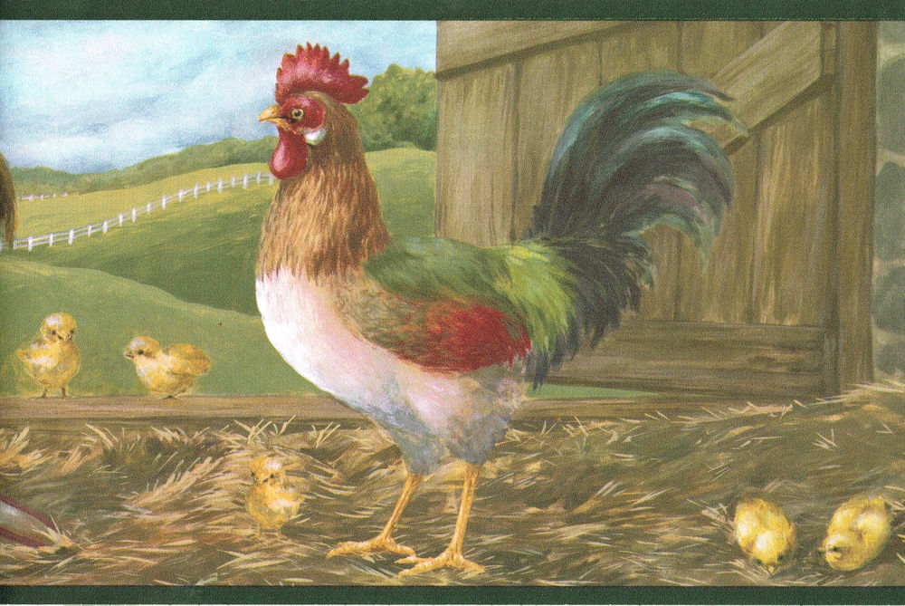 Country Rooster Baby Chicks Chicken Family Farm Wallpaper Border Wall 1000x669