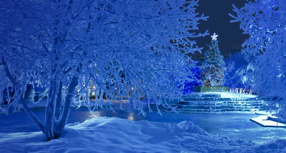 Bing Images Snowy Christmas Nighttime view of the Christmas tree 958x512
