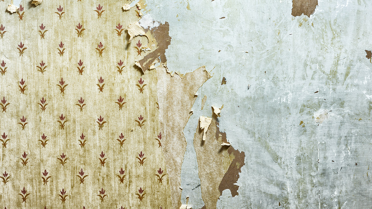 Free Download Stuck With Old Wallpaper Paint Over It Miller