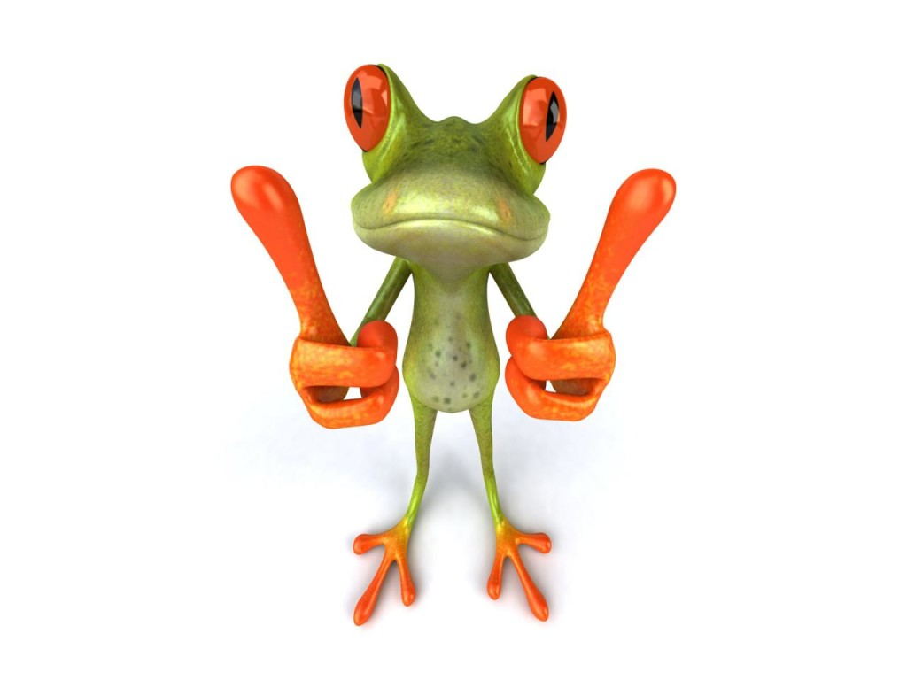 Frog Wallpaper Download Widescreen Hd Cute 3541   bwallescom 1024x768