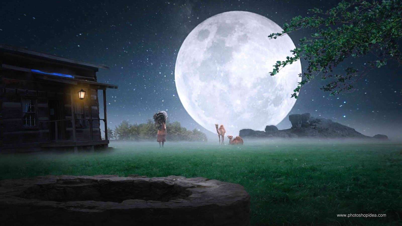 Nature background night effect with moon full hd background 1600x900