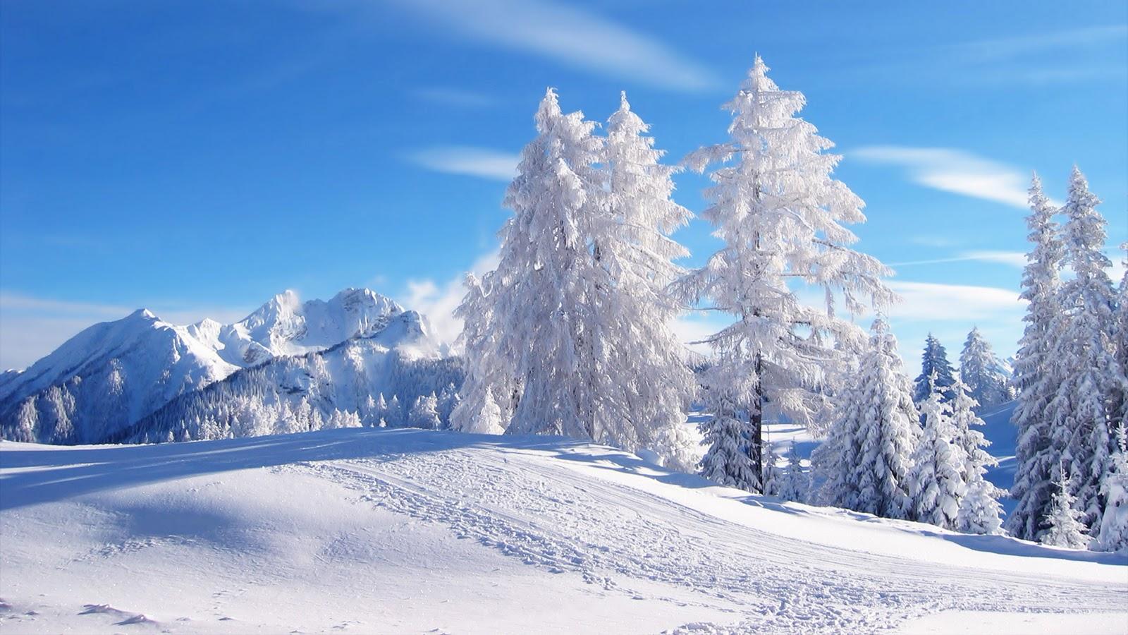 Winter Scene Poster Wallpaper Art Zeromin0 1600x900