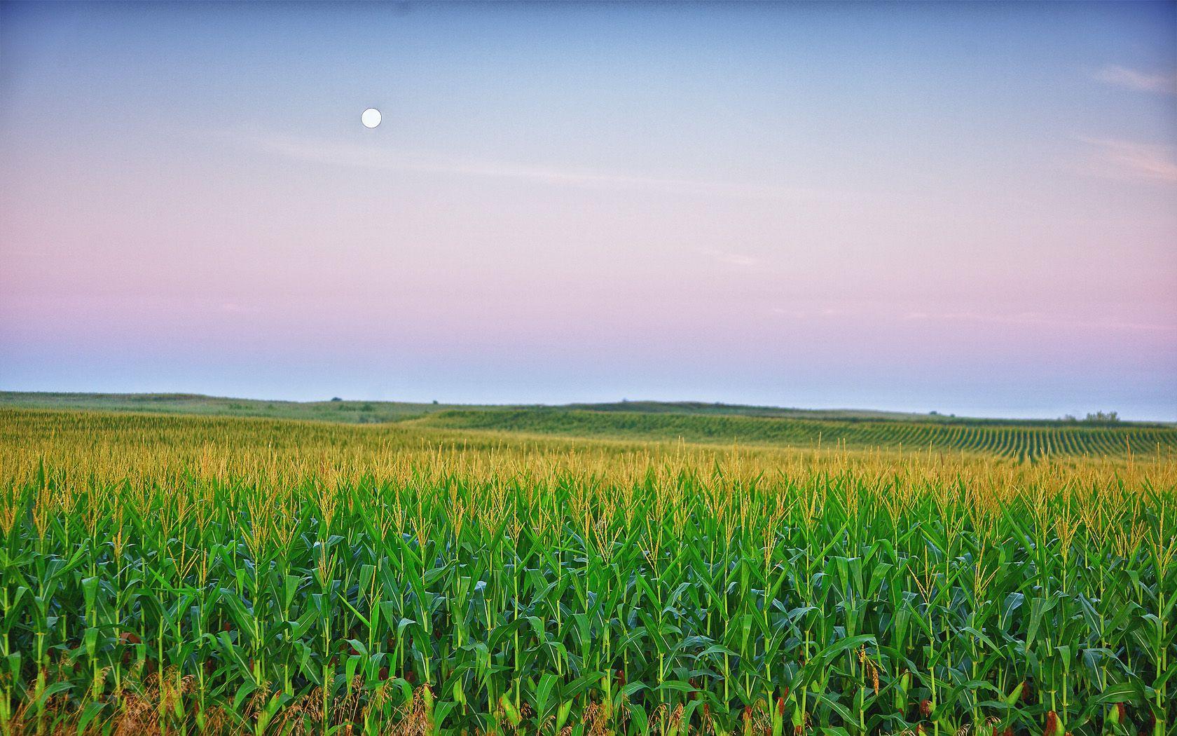Iowa Scenery Wallpapers   Top Iowa Scenery Backgrounds 1680x1050